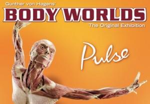 body-world