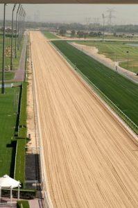 dubai-horseracing