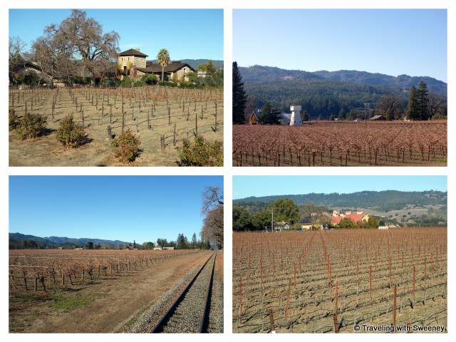 """""""Scenery of the Napa Valley in winter as seen from the Wine Train"""""""