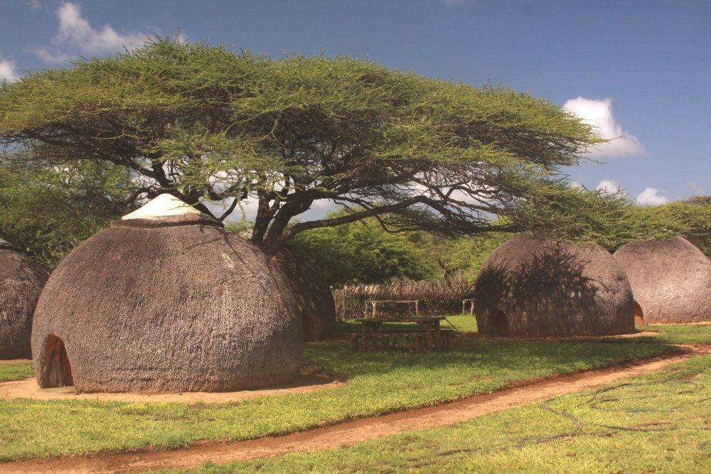 swaziland-nisela-lodge