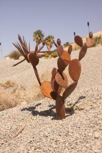 desert-adventures (5)
