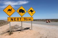 Tips for Crossing Australia's Mighty Nullarbor