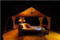 Honeymoon safaris in Tanzania!