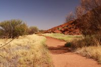 Ozzywood: Extras at Ayers Rock