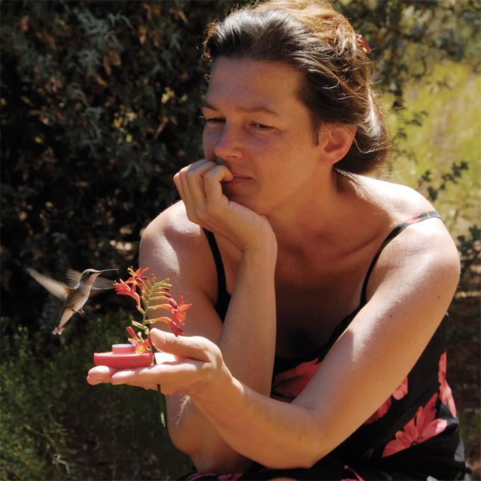 hand-feeding-hummingbird