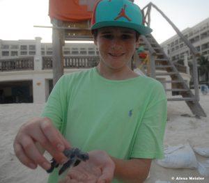 casamagna-marriott-cancun-baby-turtle3
