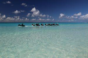 Half-Moon-Cay-Bahamas (6)