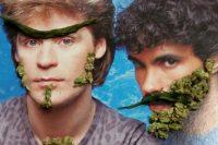 Trimmigrants- Our Adventure in Marijuana Land