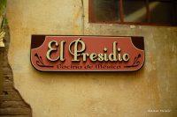 Mazatlán Food Culture: Beyond Shrimp & Pacifico Beer