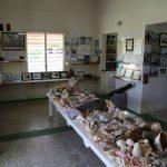 heritage-museum-anguilla (2)