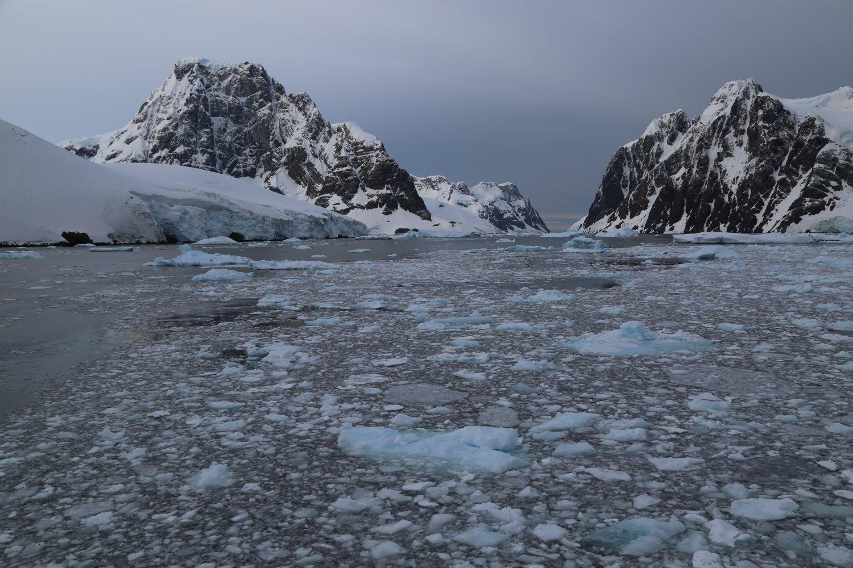 antarctica-oceanwide (2)
