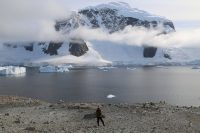 The Unique Beauty of Antarctica