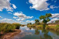 Exploring South Africa's Kruger National Park