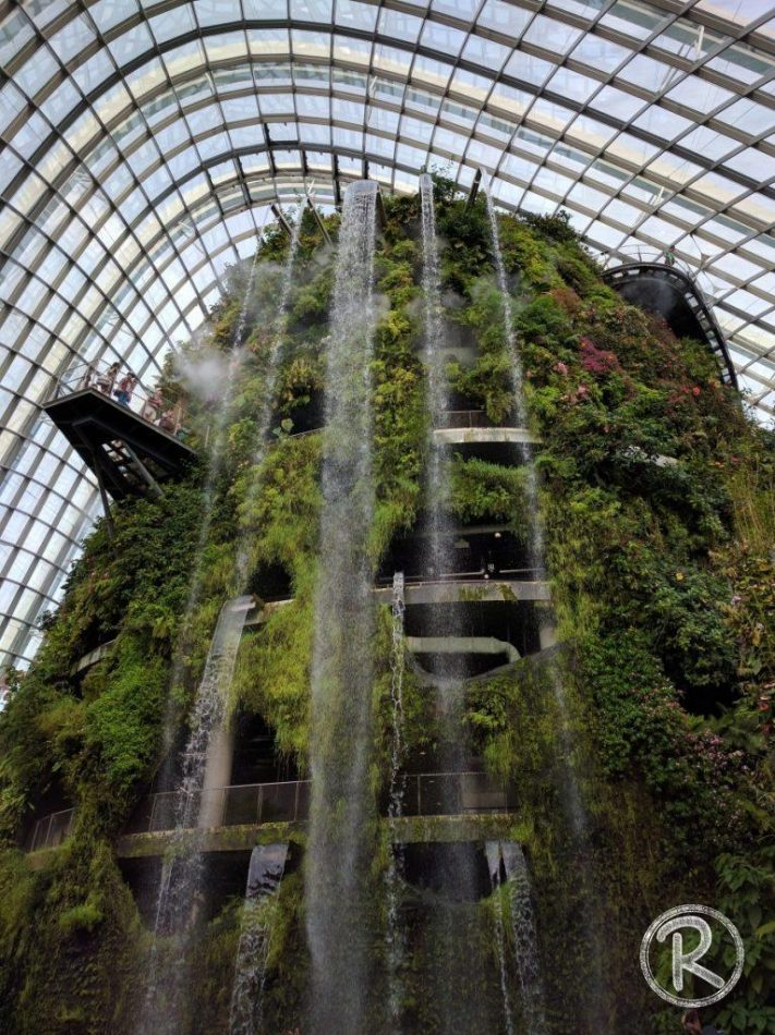 Cloud Forest - Gardens by the Bay (Day 2)