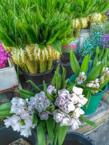 flower market - Chiang Mai, Thailand