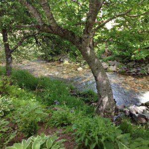 Cape Breton - Glenora Inn and Distillery - the grounds 6