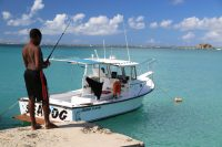 What Should Be Expected From Fishing Charters?