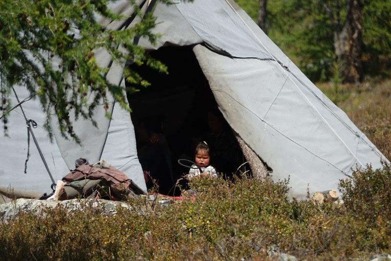 Life in the Tsaatan Camp