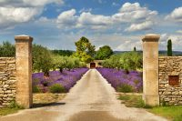 The 7 Wonders of Provence