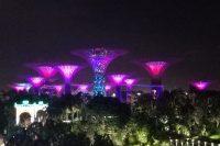 Gardens of Singapore