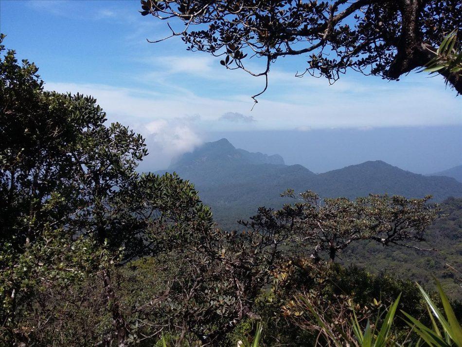 seven virgin mountain range