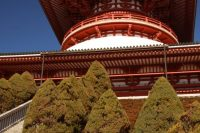 A Teacher's Story: My Gaijin Experience In Japan