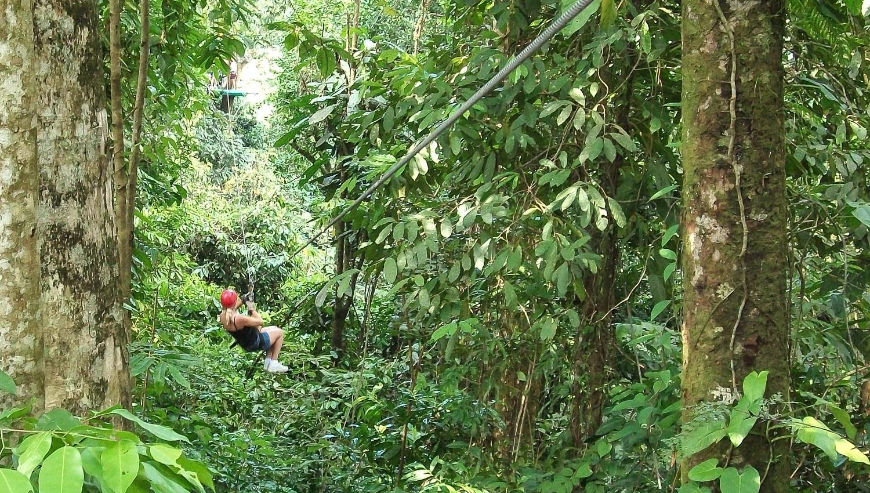 ziplining-costa-rica-rainforest