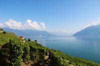 Exploring Wine in Switzerland's Lake Geneva Region