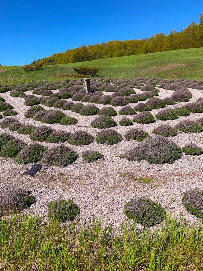 Lavender Hill Farm, Michigan.