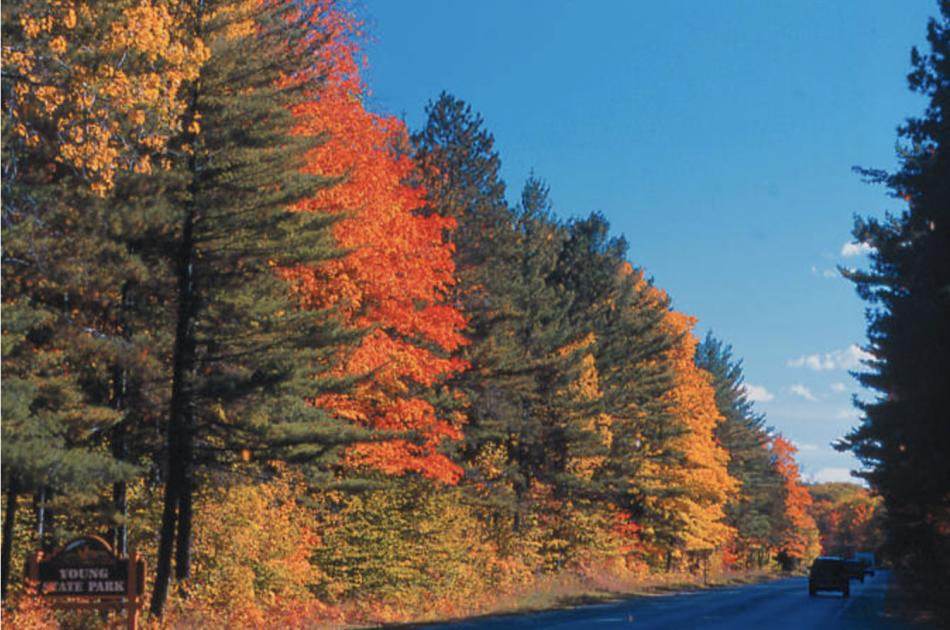 Autumn in petoskey