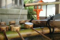 Notes from a Traveler + Kyoto Experiences