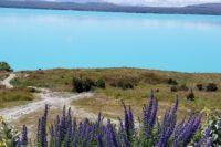 Mount Cook Scenic Flights, New Zealand