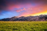 Hone Your Hobbies in Legendary Carson Valley